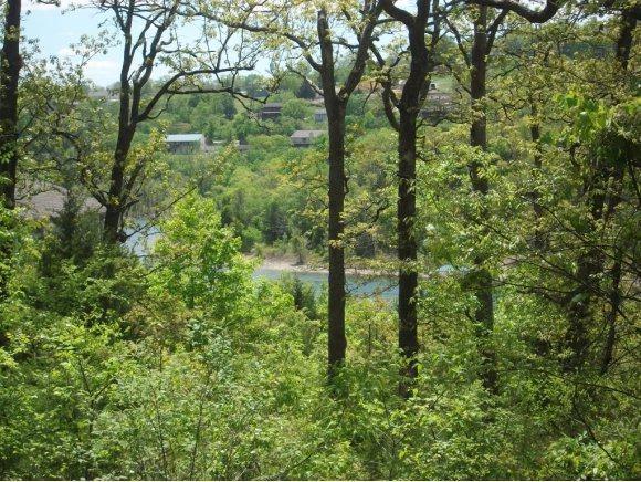 Lot 8 Treasure Hunt Trail, Blue Eye, MO 65611 (MLS #60135130) :: Sue Carter Real Estate Group