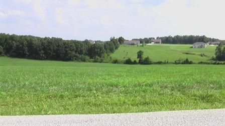Lot 4 Ranch Estates Drive, Highlandville, MO 65669 (MLS #60135272) :: Massengale Group