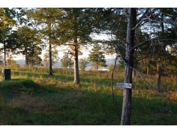 Lot 27, 28 Cedar Falls Road, Shell Knob, MO 65747 (MLS #60135298) :: Sue Carter Real Estate Group