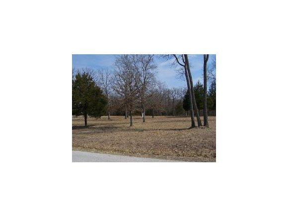 Lot10 Hidden Meadow, Branson, MO 65616 (MLS #60135885) :: The Real Estate Riders