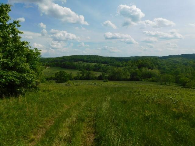 Tbd County Road 106-507, Eminence, MO 65466 (MLS #60137115) :: The Real Estate Riders