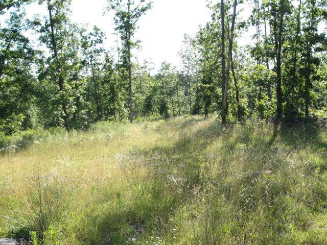 00 N Kk Highway, Hartshorn, MO 65479 (MLS #60138008) :: Sue Carter Real Estate Group
