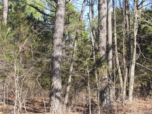 000 Boone Creek Road, Licking, MO 65542 (MLS #60138975) :: Sue Carter Real Estate Group