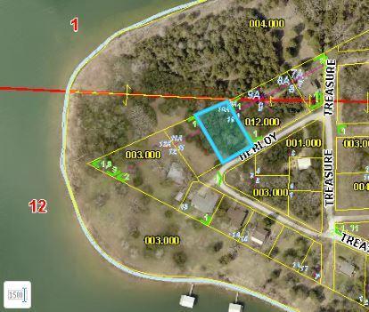 Lot 10 Herloy Circle, Lampe, MO 65681 (MLS #60139999) :: Sue Carter Real Estate Group