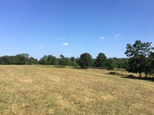 000 County Road 427, Summersville, MO 65571 (MLS #60141809) :: Sue Carter Real Estate Group