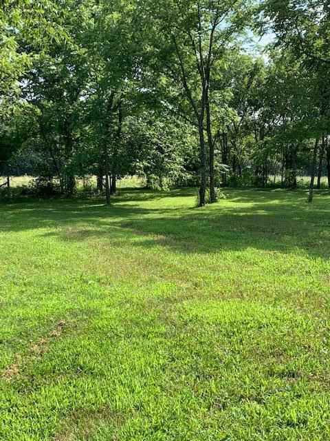 3034 V Highway, Hartville, MO 65667 (MLS #60142547) :: Sue Carter Real Estate Group