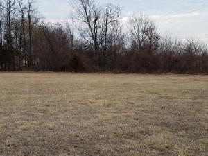 4590 Anita Avenue, Pleasant Hope, MO 65725 (MLS #60142764) :: Team Real Estate - Springfield