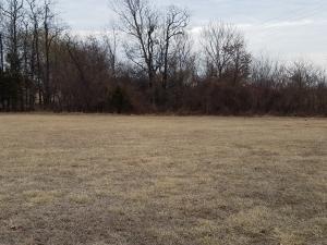 5481 Anita Avenue, Pleasant Hope, MO 65725 (MLS #60142766) :: Team Real Estate - Springfield