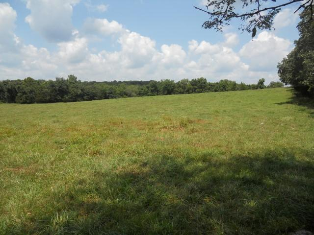 *** County Road 2410, Mountain View, MO 65548 (MLS #60143864) :: Sue Carter Real Estate Group