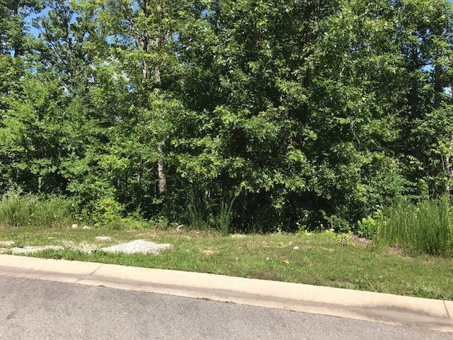 132 Shinnecock Hills Drive Lot 16, Branson, MO 65616 (MLS #60144272) :: Weichert, REALTORS - Good Life