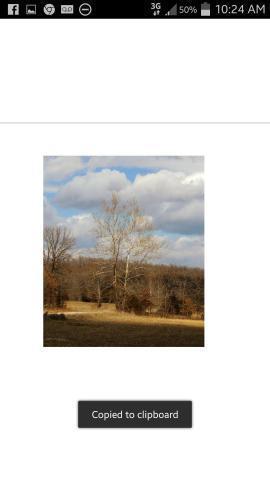 4146-4147 Hudlow Lane, Edwards, MO 65326 (MLS #60144594) :: Team Real Estate - Springfield