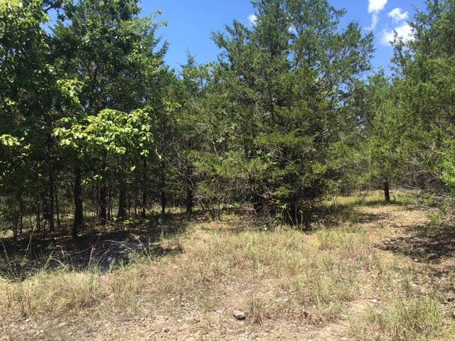 Lot 12 Crows Nest Road, Indian Point, MO 65616 (MLS #60147665) :: Sue Carter Real Estate Group