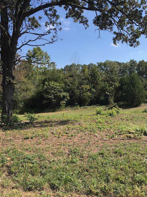 Tbd Rainbow Hill Ln Lot 8 And Lot 9, Reeds Spring, MO 65737 (MLS #60148632) :: Sue Carter Real Estate Group