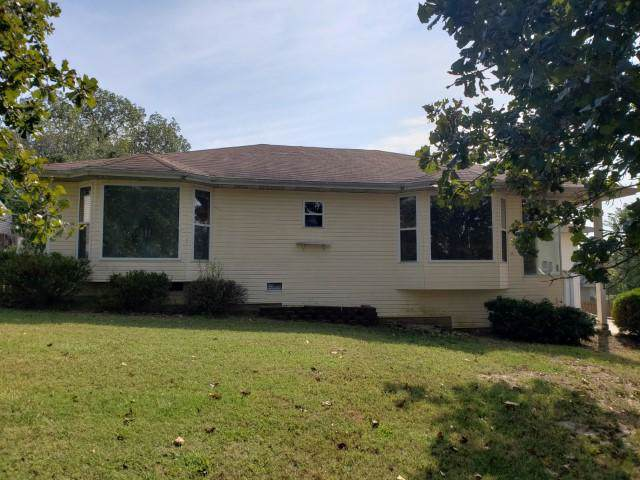 161 Mary Lane, Kirbyville, MO 65679 (MLS #60149362) :: The Real Estate Riders