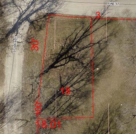 320 Pine Street, Sparta, MO 65753 (MLS #60149549) :: Sue Carter Real Estate Group
