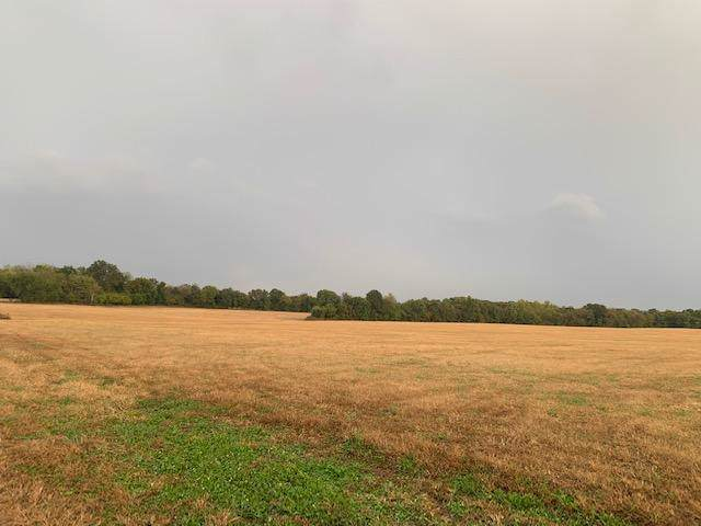 0 E 492nd Road, Morrisville, MO 65710 (MLS #60149650) :: Sue Carter Real Estate Group