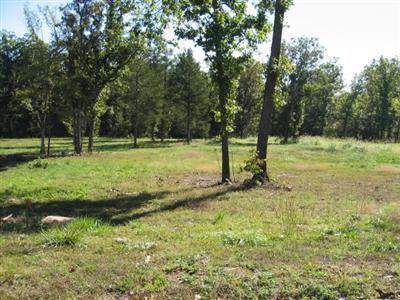 Lot 39 Black Bear Drive, Saddlebrooke, MO 65630 (MLS #60150522) :: Weichert, REALTORS - Good Life