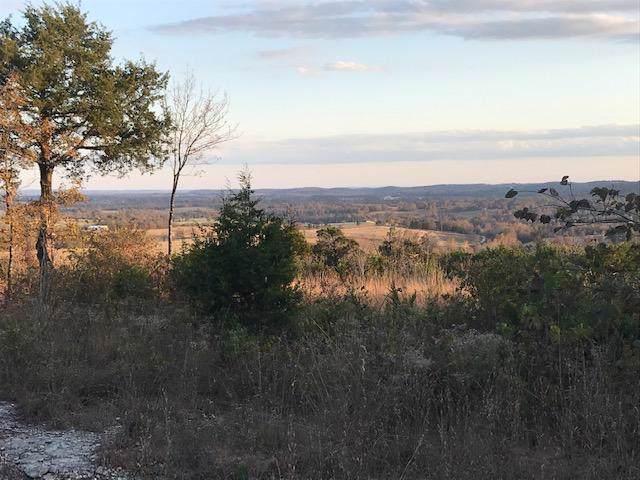 Tbd Rail Hollow Drive, Theodosia, MO 65761 (MLS #60151354) :: Sue Carter Real Estate Group