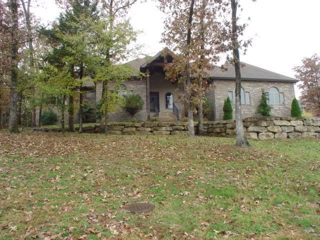 219 Pinehurst Drive, Branson, MO 65616 (MLS #60151472) :: Weichert, REALTORS - Good Life