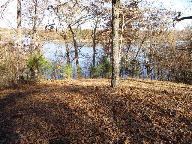 Lot 2 Pr 2247, Golden, MO 65658 (MLS #60152062) :: Sue Carter Real Estate Group