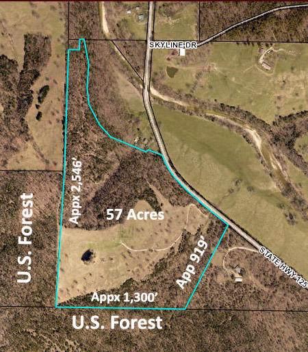 10229 Highway 125, Bradleyville, MO 65614 (MLS #60152549) :: Weichert, REALTORS - Good Life