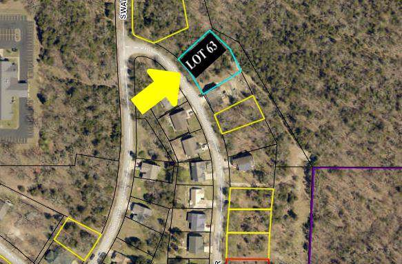 Lot 63 Eagle Drive, Forsyth, MO 65653 (MLS #60153013) :: Weichert, REALTORS - Good Life