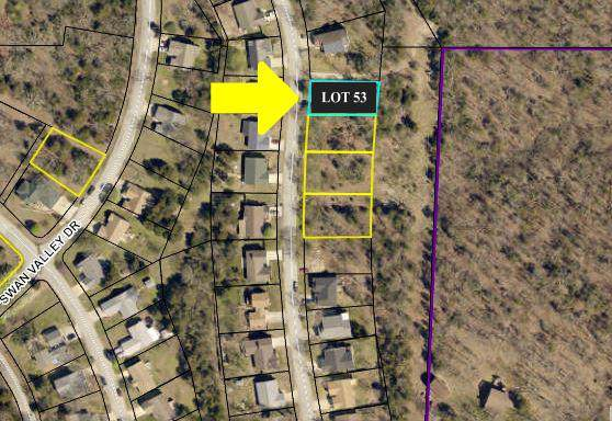 Lot 53 Eagle Drive, Forsyth, MO 65653 (MLS #60153025) :: Weichert, REALTORS - Good Life