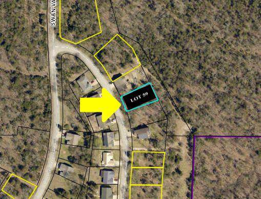 Lot 59 Eagle Drive, Forsyth, MO 65653 (MLS #60153027) :: Weichert, REALTORS - Good Life