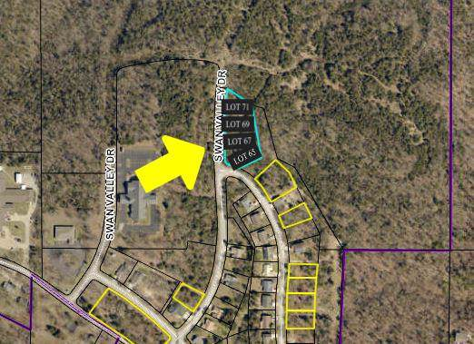 Lot 67 Swan Valley, Forsyth, MO 65653 (MLS #60153036) :: Team Real Estate - Springfield