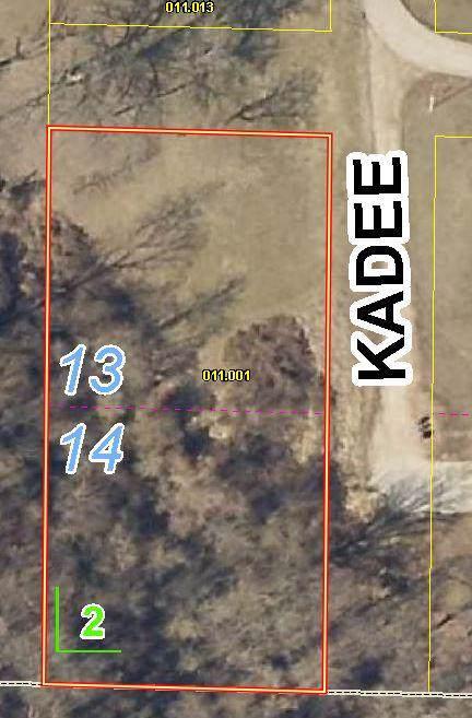 Lots 13&14 Kadee Drive, Crane, MO 65633 (MLS #60153137) :: Team Real Estate - Springfield