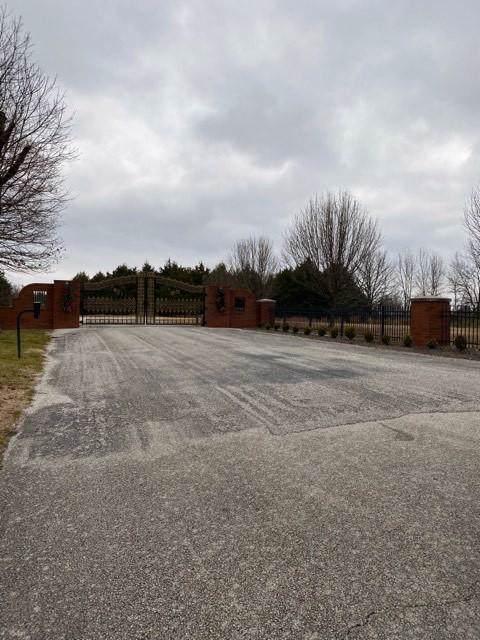 000 Kingsgate, Lampe, MO 65681 (MLS #60153155) :: Sue Carter Real Estate Group