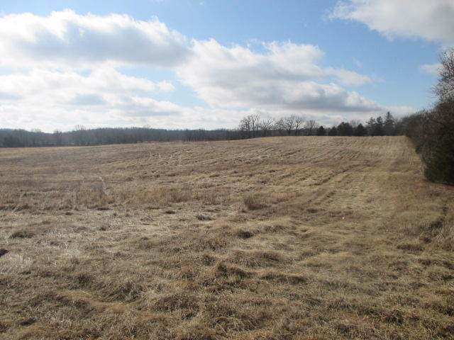 6540 County Road 6540, West Plains, MO 65775 (MLS #60153515) :: Weichert, REALTORS - Good Life