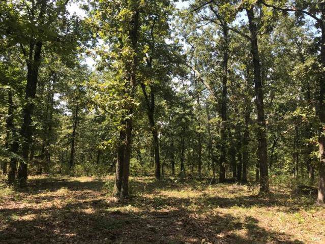 9540 E 76 Highway, Anderson, MO 64831 (MLS #60154379) :: Sue Carter Real Estate Group