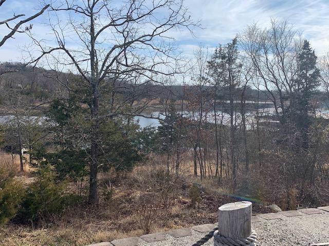 Lot 1 Cedar Landing Subdivision, Branson, MO 65616 (MLS #60154503) :: Sue Carter Real Estate Group