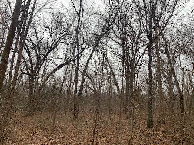 000 Dade County Rd 68, Greenfield, MO 65661 (MLS #60154625) :: Sue Carter Real Estate Group
