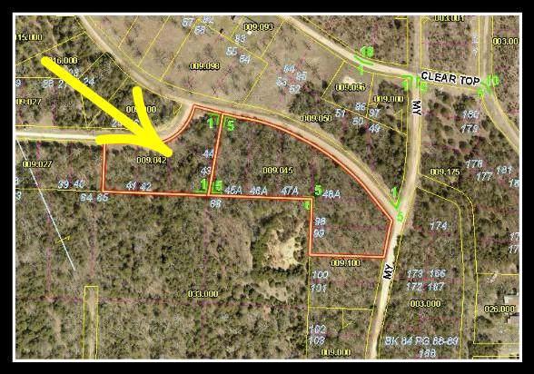 Tbd Pack Lane, Lampe, MO 65681 (MLS #60155384) :: The Real Estate Riders