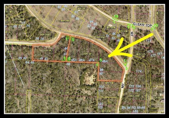 Tbd Pack Lane, Lampe, MO 65681 (MLS #60155385) :: The Real Estate Riders