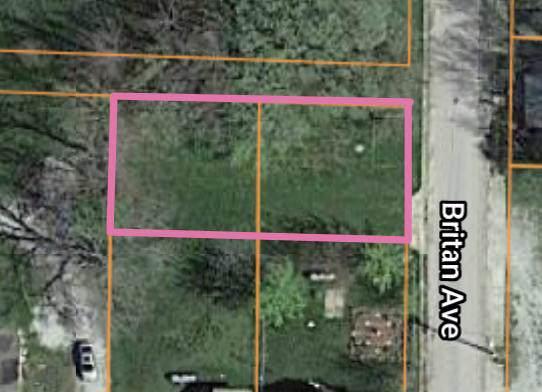 000 Britan Avenue, Mountain Grove, MO 65711 (MLS #60155397) :: Sue Carter Real Estate Group