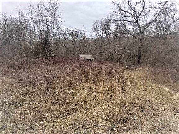Tbd Martins Branch Road, Fordland, MO 65652 (MLS #60156422) :: Weichert, REALTORS - Good Life