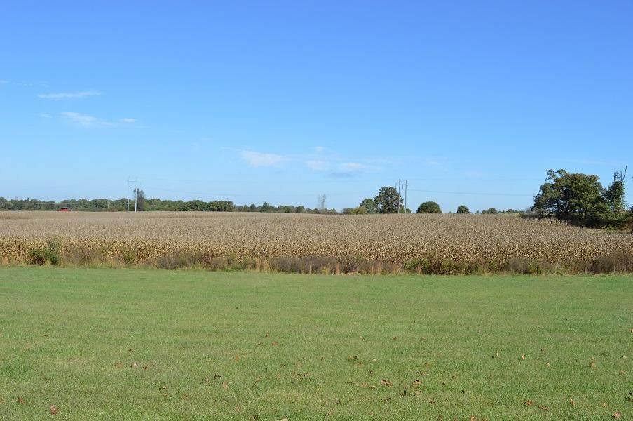 000 Hwy 60 And Dyer Ave Tract 2 - Photo 1