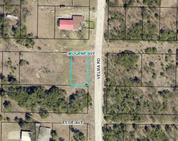 113 Imogene Avenue, Protem, MO 65733 (MLS #60156773) :: The Real Estate Riders