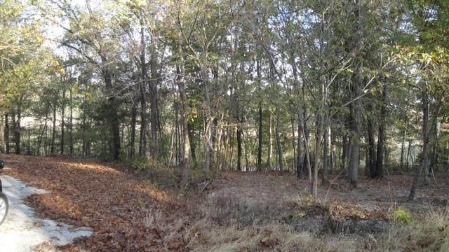 Lot 15 Fox Fire Lane, Shell Knob, MO 65747 (MLS #60157094) :: Team Real Estate - Springfield