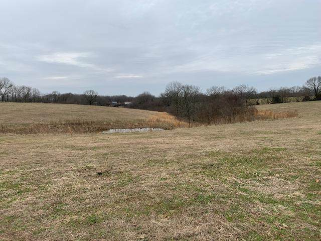 Tbd Silvey Rd, Galena, MO 65656 (MLS #60157125) :: Sue Carter Real Estate Group