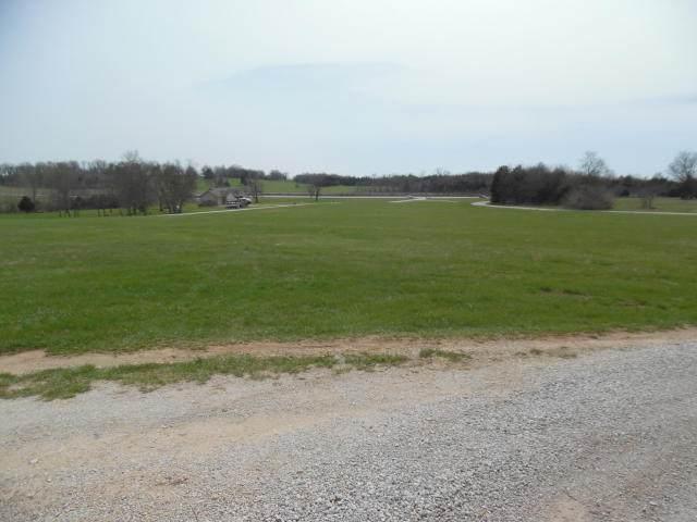 Lot 13 Hunters Glen, Seligman, MO 65745 (MLS #60157619) :: Team Real Estate - Springfield