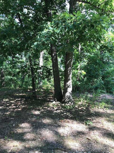 Lot 25 Lakeview Drive, Anderson, MO 64831 (MLS #60158706) :: Sue Carter Real Estate Group