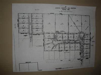 000 N Farm Rd 213 Street, Fair Grove, MO 65648 (MLS #60158858) :: Winans - Lee Team | Keller Williams Tri-Lakes