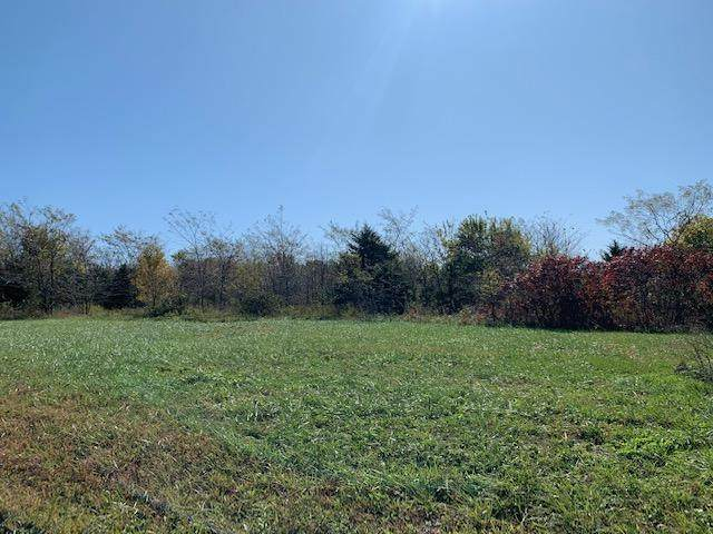 Lot 7 E 568th, Willard, MO 65781 (MLS #60160244) :: Clay & Clay Real Estate Team