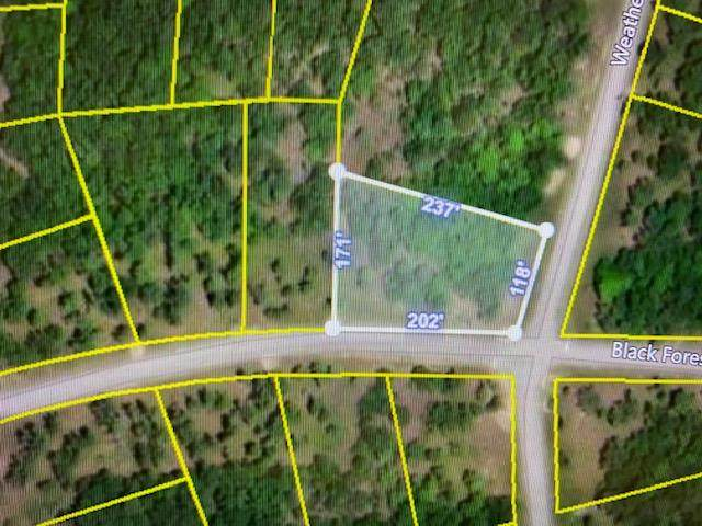 Lot 206 Black Forest Lane, Branson West, MO 65737 (MLS #60160592) :: Weichert, REALTORS - Good Life