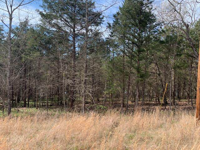 Lot 45 Emerald Beach, Golden, MO 65658 (MLS #60160745) :: Winans - Lee Team | Keller Williams Tri-Lakes