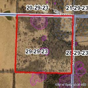 1197 S Farm Rd 89, Republic, MO 65738 (MLS #60162348) :: The Real Estate Riders
